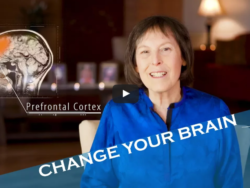 Change Your Brain - Guided Meditation